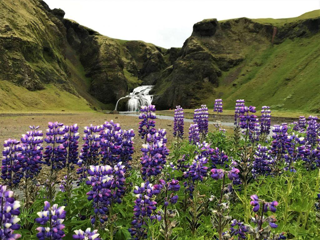 Voyage en islande , version été !